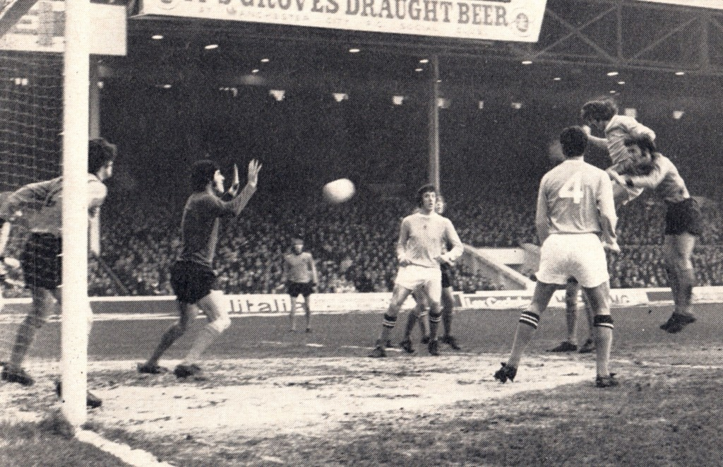 wolves home 1971 to 72 action 3
