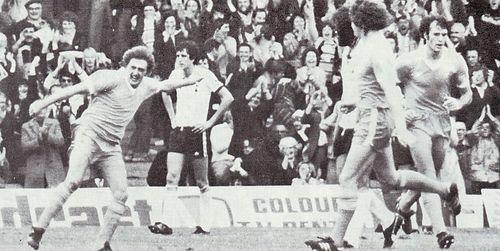 tottenham home 1978 to 79 owen goal