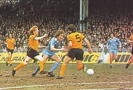 wolves home 1978 to 79 action7