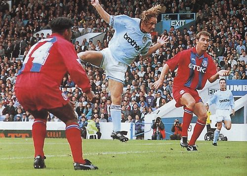 crystal palace home 1994 to 95 walsh goal