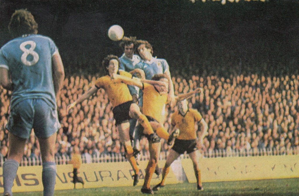 wolves home 1977 to 78 action15
