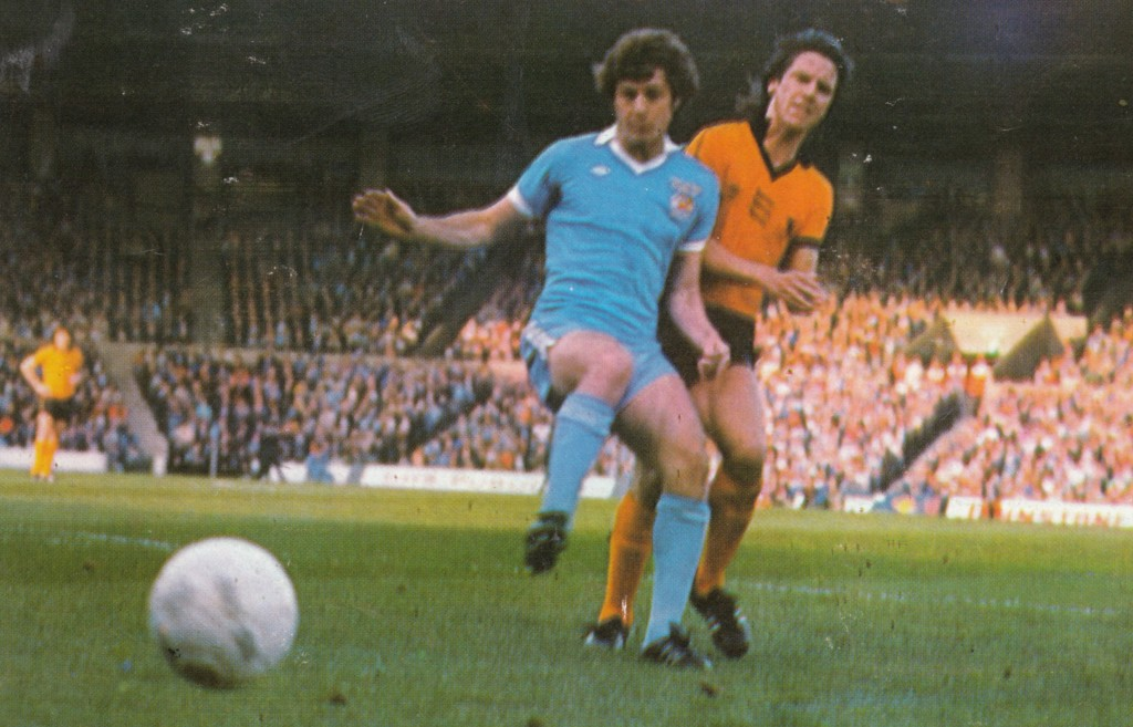 wolves home 1977 to 78 action18