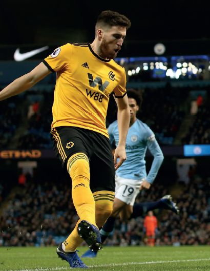 wolves home 2018 to 19 action
